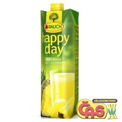 JUICE RAUCH HAPPY DAY ANANAS 1l