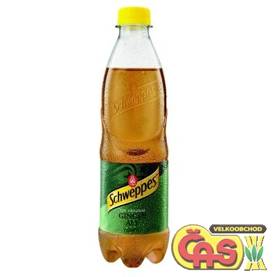 SCHWEPPES 0.5l GINGER ALE PET